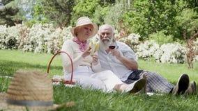 Porträt von glücklichen älteren Paaren am Picknick im Sommerpark stock video