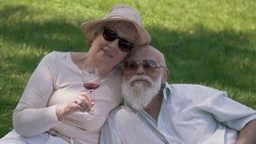 Porträt von reizenden reifen Paaren am Picknick im Park stock footage