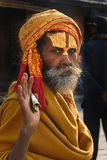 Porträt von Sadhu Stockfotografie