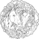 Porträt von zwei Pferden, von Mann und von Hengst mit Blumen stockfoto