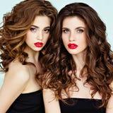 Porträt von zwei schön, bezaubernder, sinnlicher Brunette mit gorg stockbild