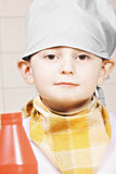 Porträt wenigen Kochs stockbilder