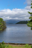 Porträtansicht von Loch Lomond in Schottland, das durch Baum gestaltet wird lizenzfreies stockfoto