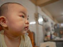Porträtfoto von Cutie und von hübschem asiatischem Jungen stockfotos