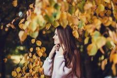 Porträtfrau im Herbstpark stockfotografie