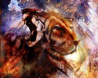 Porträtlöwe und Tigergesicht, Profilporträt, auf buntem abstraktem Federmusterhintergrund Abstrakte Farbcollage mit Stellen Lizenzfreie Stockfotos