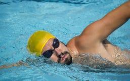 Porträtschwimmer-Swimmingpool Stockfotos