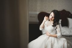 Portr?t der sch?nen Braut mit Modeschleier am Hochzeitsmorgen stockbild