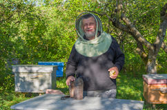 Portrain of Ukrainian smiling senior bee-keeper. At work place Royalty Free Stock Images