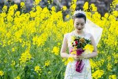 Portraint невесты с белым платьем свадьбы в поле цветка Коул Стоковые Фото