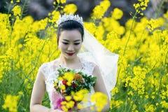 Portraint невесты с белым платьем свадьбы в поле цветка Коул Стоковая Фотография