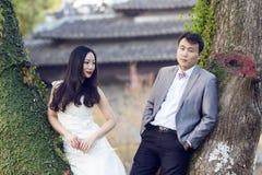 Portraint chinês do casamento dos pares na frente das árvores velhas e da construção velha Imagem de Stock