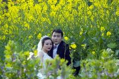 Portraint chino de la boda de los pares en campo de flor del col fotos de archivo