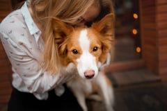 Portrair dziewczyny cuddle czerwień psi śliczny Border collie i biel fotografia royalty free