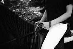 Portrait émotif d'une femelle dans l'amour avec des chevaux, animal familier frison noir de pur sang d'étalon Images stock