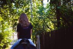 Portrait émotif d'une femme de cavalier d'amazone, animal familier frison noir de pur sang d'étalon Photo libre de droits