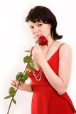 Portrait. The girl in a red dress with a rose royalty free stock images