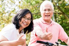 Portrait of active senior couple standing on bicycles. Portrait of active senior couple smiling while standing on bicycles outdoors in summer Royalty Free Stock Photos
