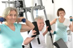 Active smiling people  exercising in gym. Portrait of active smiling people exercising in gym Royalty Free Stock Photography