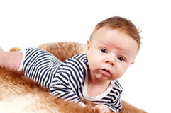 Portrait of adorable baby boy lying on fur Stock Photography