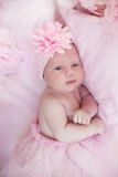 Portrait of adorable baby girl over pink, infant child. Funny Stock Image
