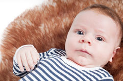 Portrait of adorable baby lying on fur Stock Images