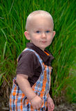 Portrait of an adorable blond toddler in a green garden Stock Images