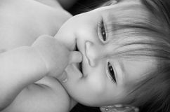 Portrait of adorable brunette baby girl Royalty Free Stock Photo