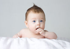 Portrait of adorable infant Royalty Free Stock Image