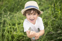 Portrait of adorable kid boy with hat standing on a summer meadow Royalty Free Stock Photo