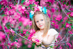 Portrait of adorable little girl in in blooming apple tree garden on spring day Royalty Free Stock Photos