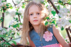 Portrait of adorable little girl in blooming cherry tree garden outdoors Stock Photography