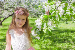 Portrait of adorable little girl in blossoming Royalty Free Stock Image