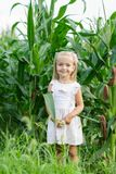 Portrait of Adorable Little girl in a corn field on beautiful autumn day. Harvesting with kids. Autumn activities for children royalty free stock photo