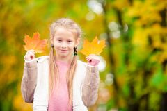 Adorable little girl at beautiful autumn day outdoors royalty free stock photography