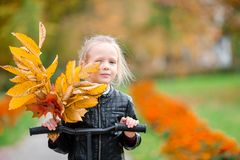 Portrait of adorable little girl with yellow and orange leaves bouquet outdoors at beautiful autumn day. Cute kid in Stock Photo
