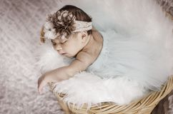 Portrait of adorable newborn baby with floral head band. Sleeping in basket covered with furry mat.New life and parenting concept.shot from top angle stock images