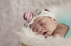 Portrait of adorable newborn baby with floral head band sleeping. In basket covered with furry mat.New life and parenting concept.shot from top angle royalty free stock photo
