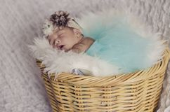 Portrait of adorable newborn baby with floral head band sleeping. In basket covered with furry mat.New life and parenting concept.shot from top angle stock photos