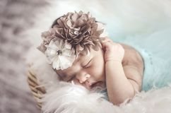 Portrait of adorable newborn baby with floral head band sleeping. In basket covered with furry mat.New life and parenting concept.shot from top angle stock image