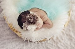 Portrait of adorable newborn baby with floral head band sleeping. In basket covered with furry mat.New life and parenting concept.shot from top angle royalty free stock photos