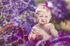 Portrait of an adorable smiling girl in lavender field. Little girl walking in a field of lavender. Outdoor summer portrait Royalty Free Stock Image