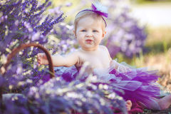 Portrait of an adorable smiling girl in lavender field. Little girl walking in a field of lavender. Outdoor summer portrait Royalty Free Stock Images