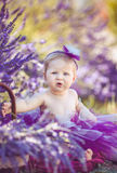 Portrait of an adorable smiling girl in lavender field. Little girl walking in a field of lavender. Outdoor summer portrait Stock Photography