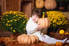 Portrait of adorable smiling girl posing with orange pumpkin in fall wooden interior. Portrait of adorable smiling girl posing with orange pumpkin in fall stock photos