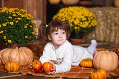 Portrait of adorable smiling girl posing with orange pumpkin in fall wooden interior. Portrait of adorable smiling girl posing with orange pumpkin in fall stock photo