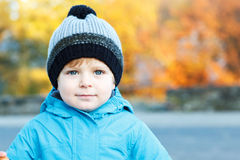 Portrait of adorable toddler boy in warm winter clothes on cold Royalty Free Stock Photo