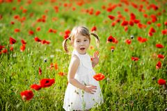 Portrait of an adorable toddler girl is surprised in a white dress play in a beautiful field of red poppies stock photo