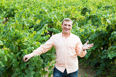 Portrait of adult man near grapes in vineyard. At summertime Stock Photography