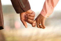 Portrait of an African American loving couple. Portrait of a happy African American loving couple Stock Image